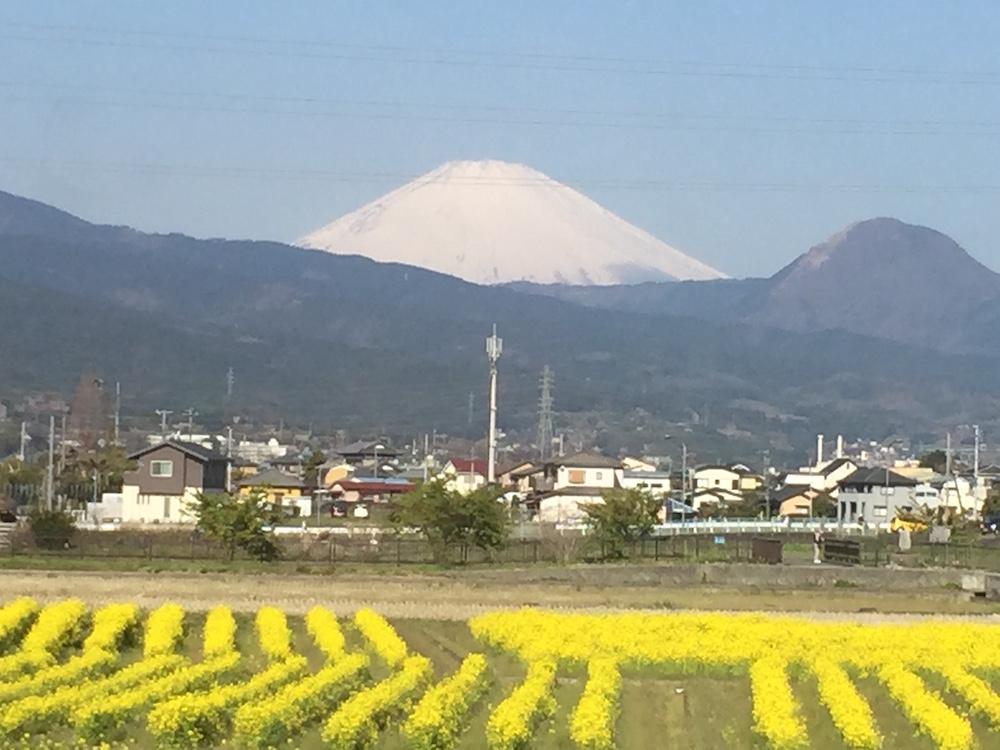 View of Mt Fuji from the romance car