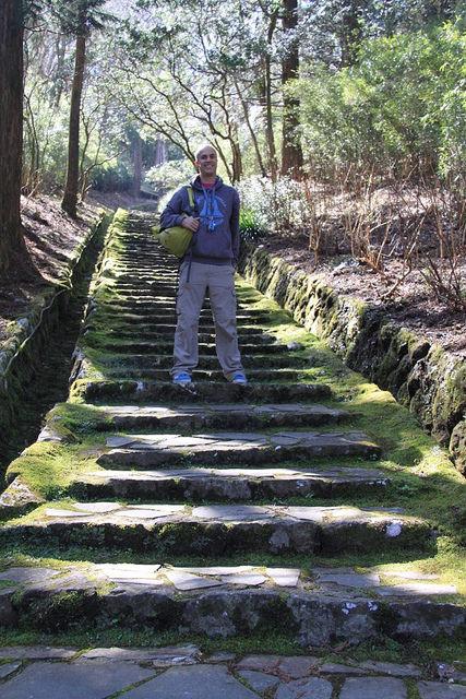Hike in the Onshi Hakone Park
