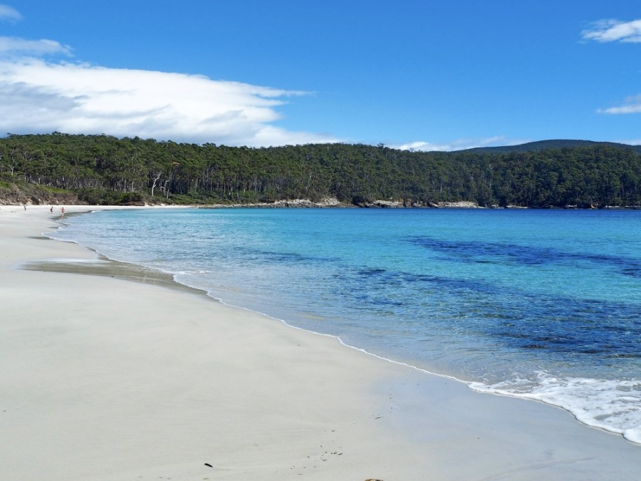 The stunning Fortescue Bay. So inviting!