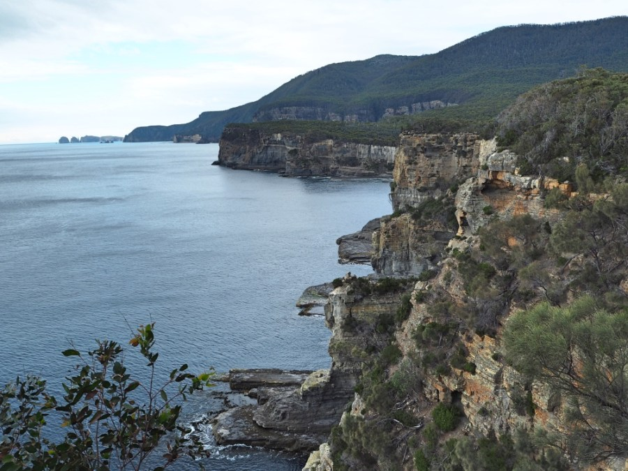 The coastal view behind the Tasman arch. Splendid!