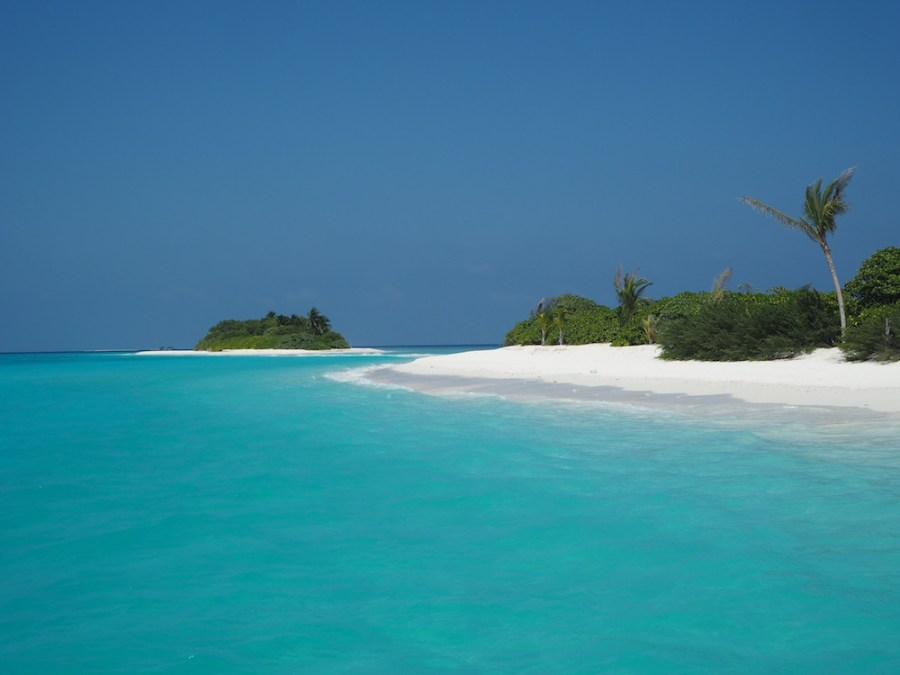 Paradise on earth!