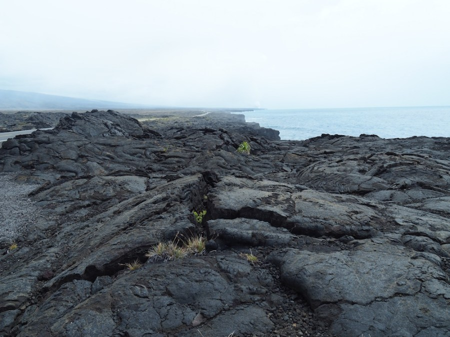 Coastal views and lava on Chain of Craters Road.