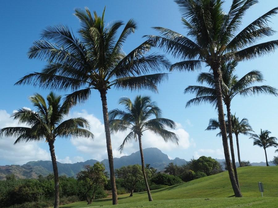The golf course on the Mahalepu trail.