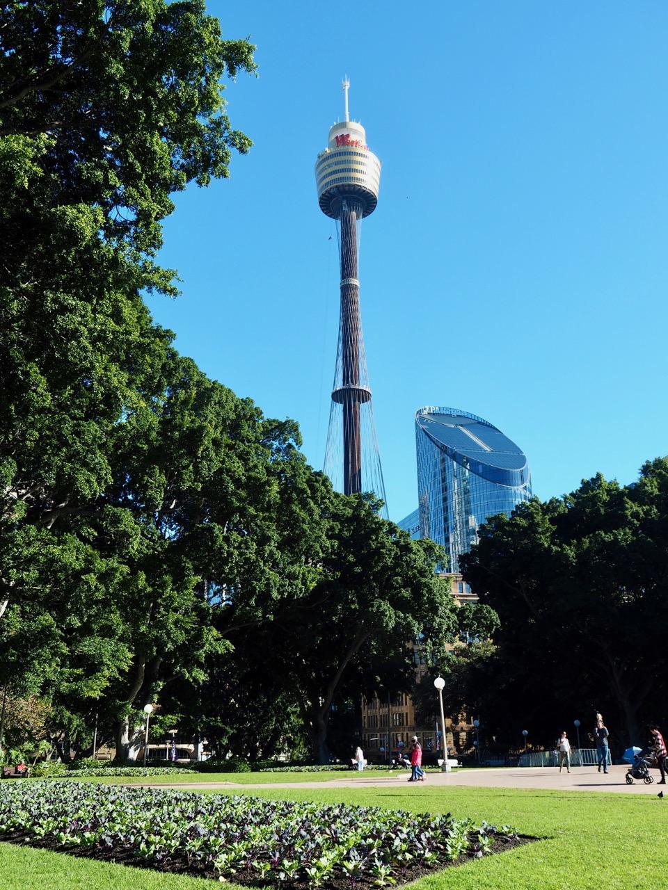 The Sydney Tower.