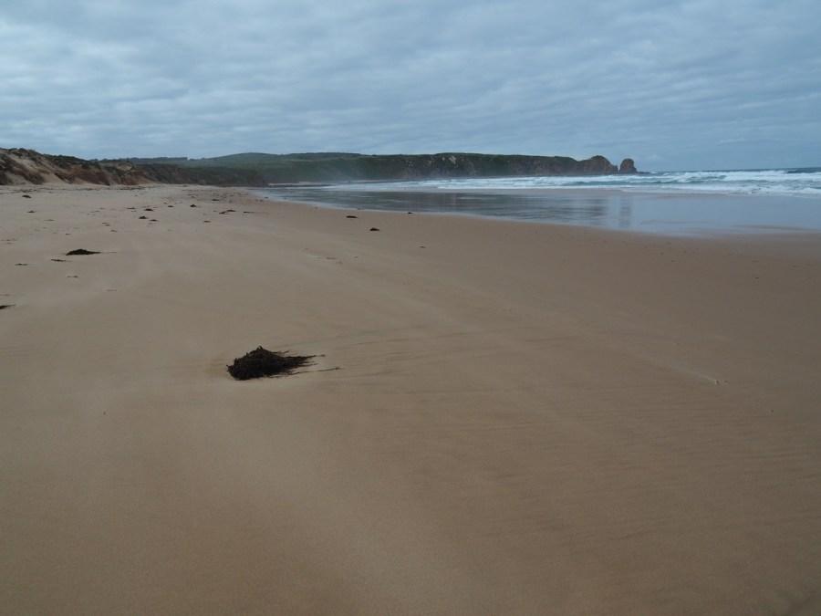 An empty Woolamai Beach.