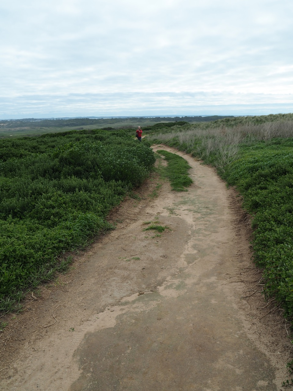 The path to the Pinnacles.