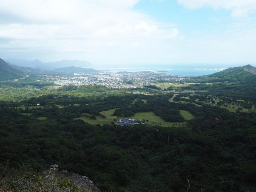 The view from the Nu'uanu Pali lookout.