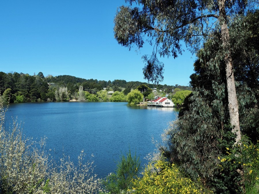 Lake Daylesford in spring.