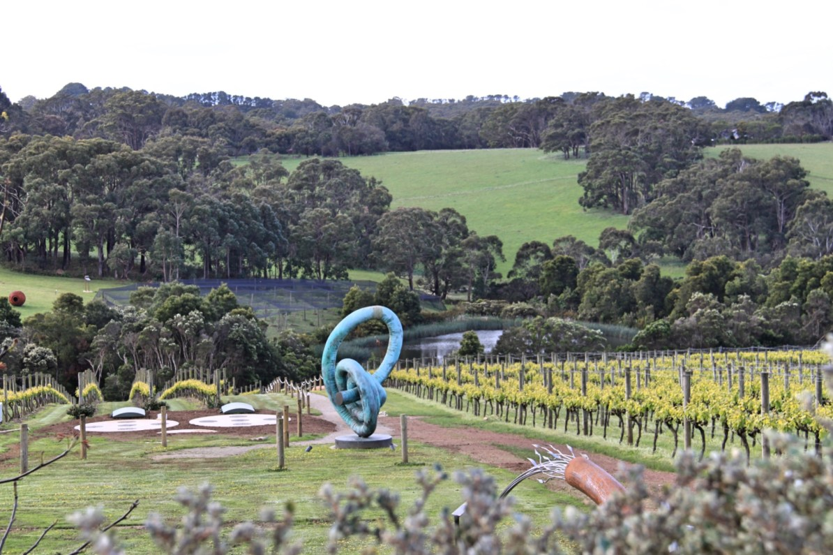 The view from Montalto Winery.