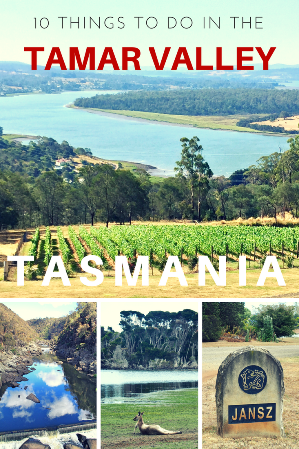 10 Things to do in the Tamar Valley