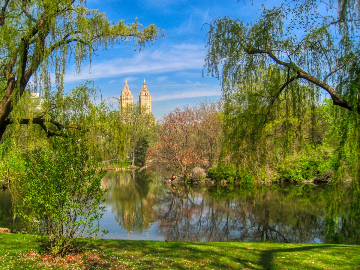 New York Central Park Lake View - Image by David Mark from Pixabay