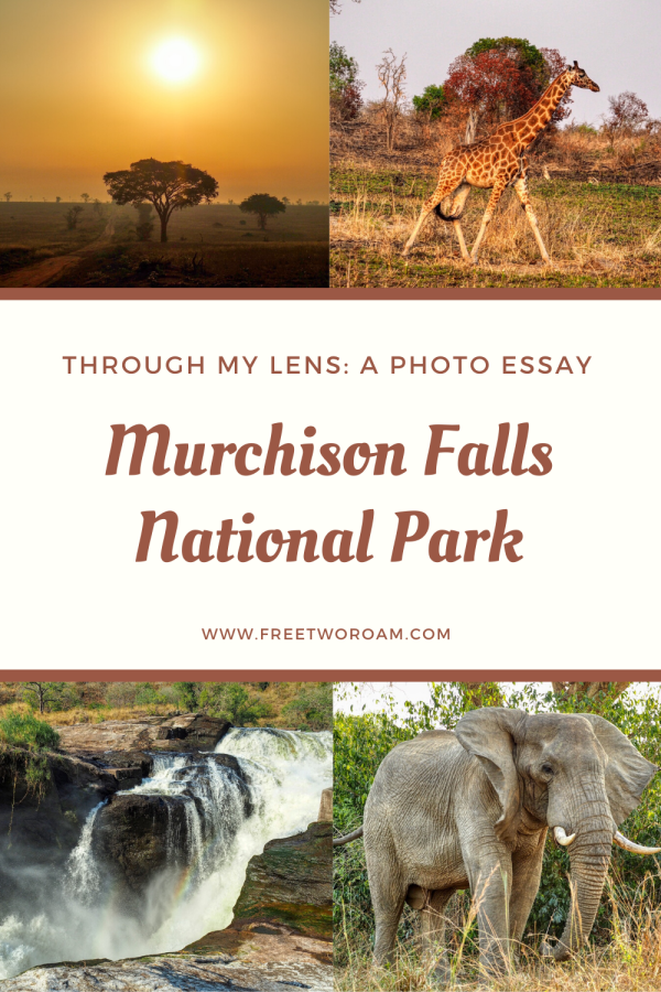 Murchison Falls National Park Through My Lens: A Photo Essay
