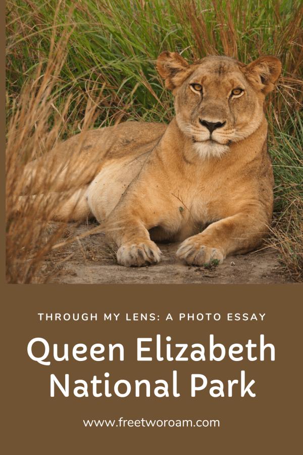 Queen Elizabeth National Park Through My Lens: A Photo Essay
