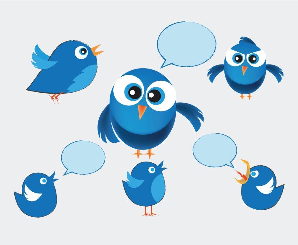 Image result for twitter birds