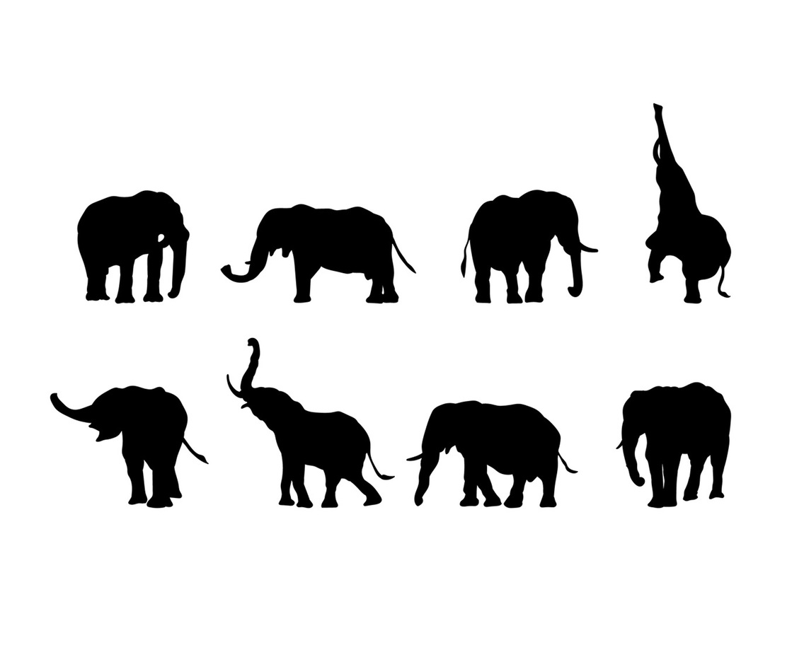 Elephant Silhouette Vector Vector Art Amp Graphics