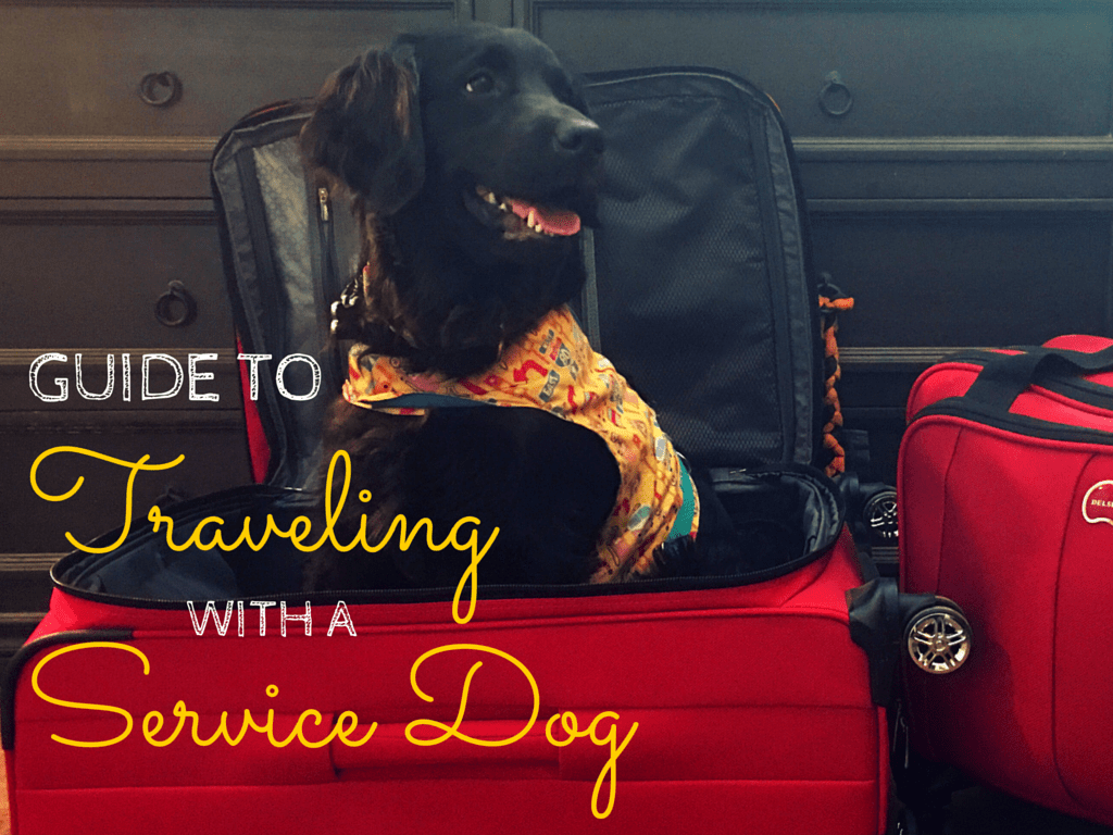 2a23acde585b Guide to Traveling with a Service Dog • Free Wheelin