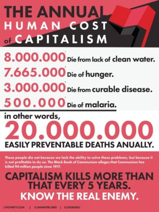 The annual cost of capitalism - 20 million people die each year