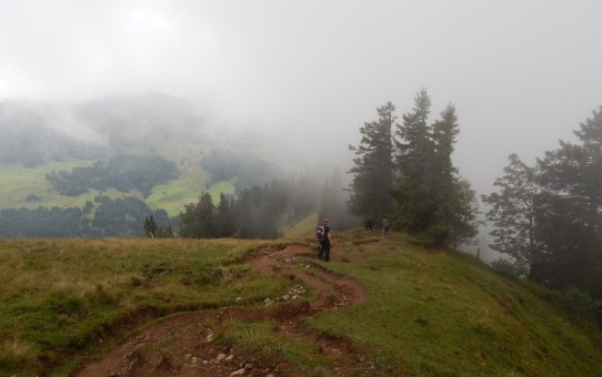 Allgäuer Alpen : Luftiger Grat – Falkenhütte – Seelekopf – Stiegalpe