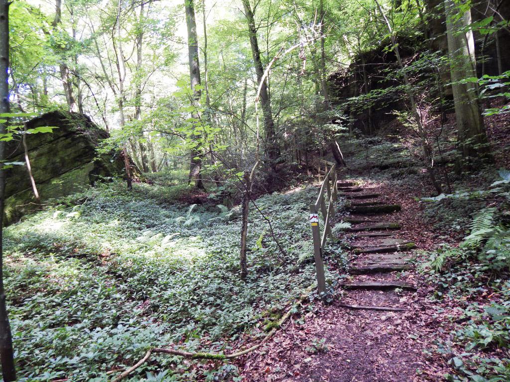 Route 1 des Mullerthal Trail, Kleine Luxemburger Schweiz