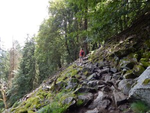 Geröllfeld auf dem Col de la Schlucht