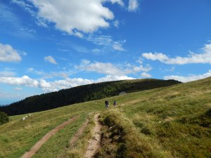Col du Schaeferthal