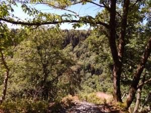 Traumschleife Altlayer Schweiz im Hunsrück