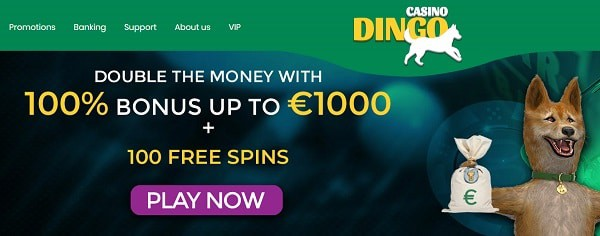 100% up to 1,000 EUR welcome bonus