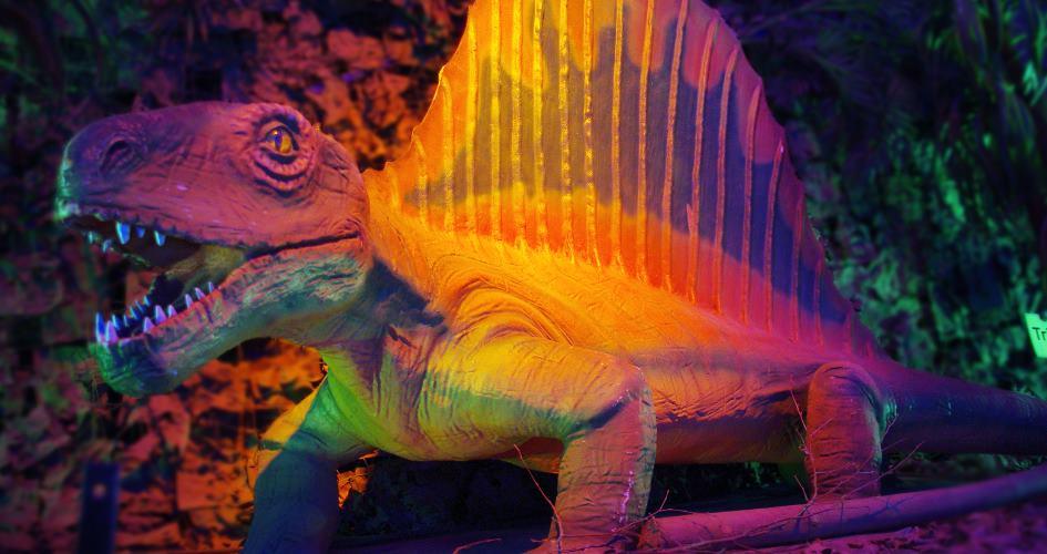 Dinosaurier-Knochen-Dating