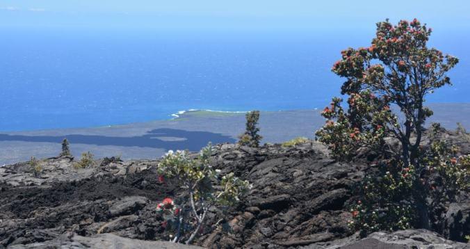 Big Island Vulkan