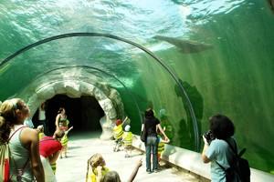Themenbereiche In Der Zoom Erlebniswelt Freizeitpark Welt De