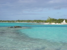 Bahamas 2011 Bahamas 2011 Bahamas 2011