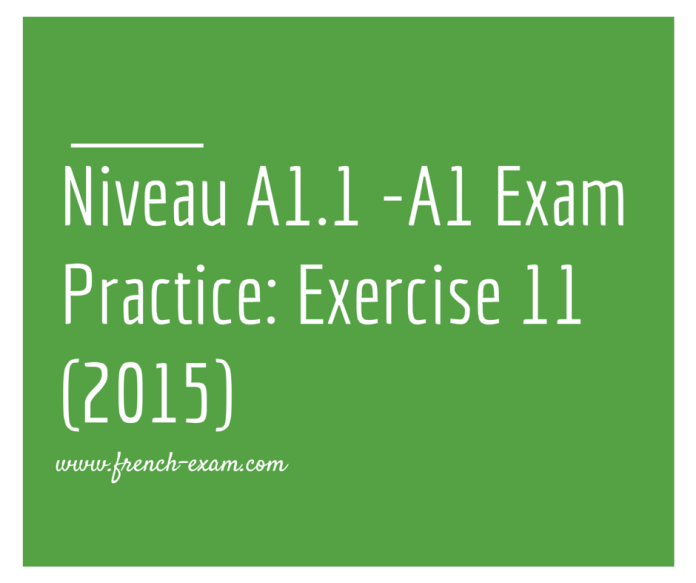 Exam Practice_ Exercise 11 (2015)