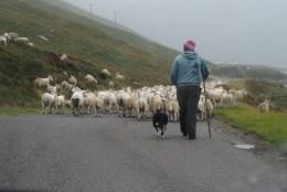 Jour 3 sur la North Coast 500 – De John O'Groats à Durne