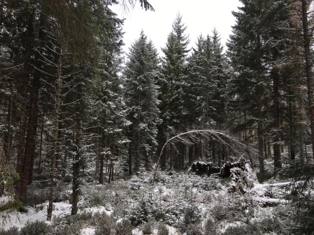 neige écosse hiver