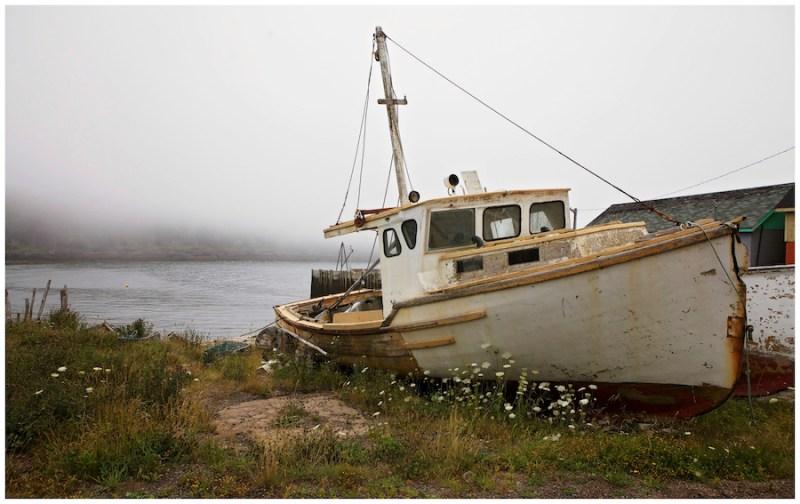 Se retrouver dans la baie de Fundy