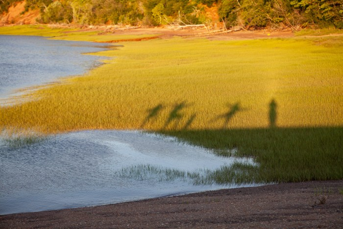 Ombres à Five islands provincial park