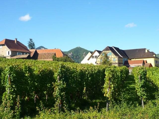 Au cœur de la Route des Vins : Hunawihr © French Moments