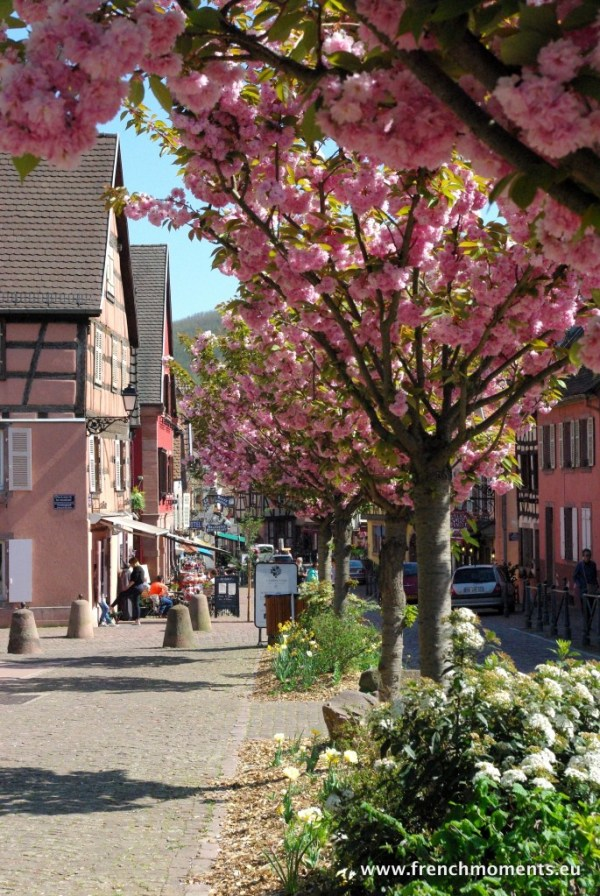séjour printanier en Alsace : Kaysersberg © French Moments