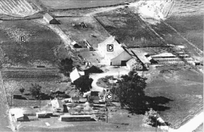 1940s aerial of the Smith Farm looking west towards the Whitman monument, showing the shed covering the Peterson cabin (A), the pasture believed by Robin Peterson to be its original location (B), the Smith family farmhouse, now demolished (C), and the red barn visible in Fig. 1 (D). The Old Oregon trail and wagon road passed by just south of the property. (Photo courtesy Robin Peterson)
