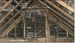 Fig. 4 : Note the rough pine sheathing cut with circular saw. The alder poles were flattened to receive sheathing, likely with a draw knife. The use of Ponderosa pine brought down from the Blue Mountains explains in part the cabin's longevity–the fragments of the Allard cabin on display nearby are cottonwood.