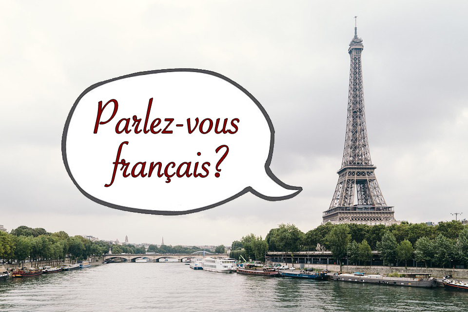 Learning French in Paris: The Best Schools and Programs for Your Language Goal