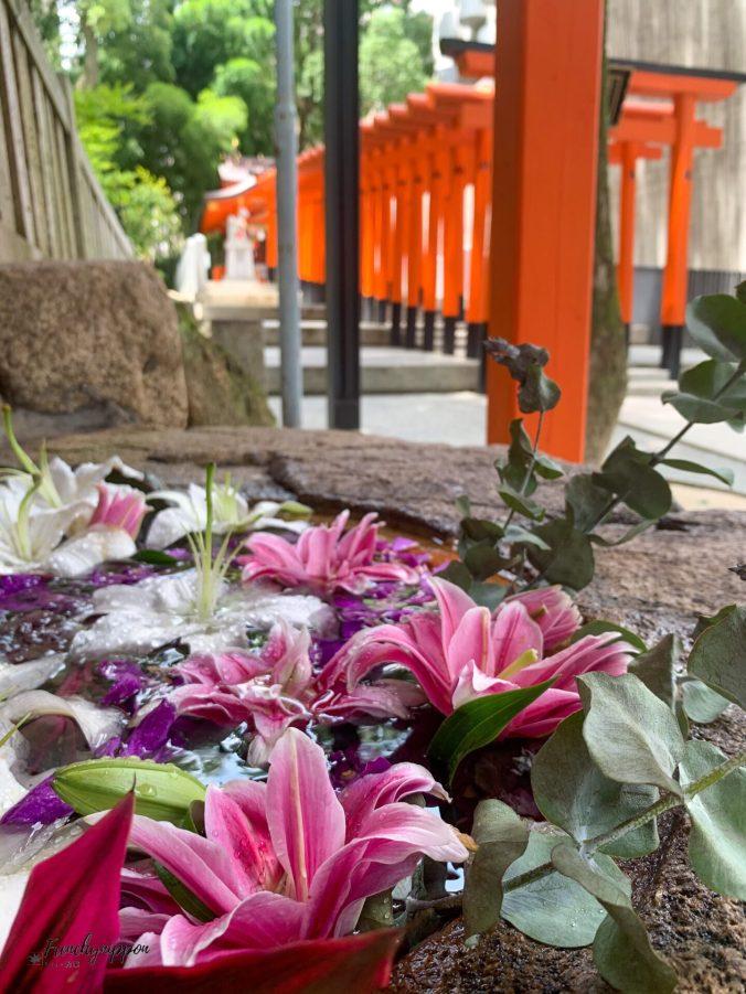 sanctuaire Ikuta de Kobe juillet 2020