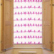Pink bird design window roller blind