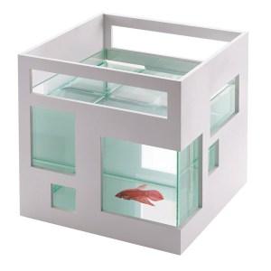 Designer fish bowl aquarium ideas