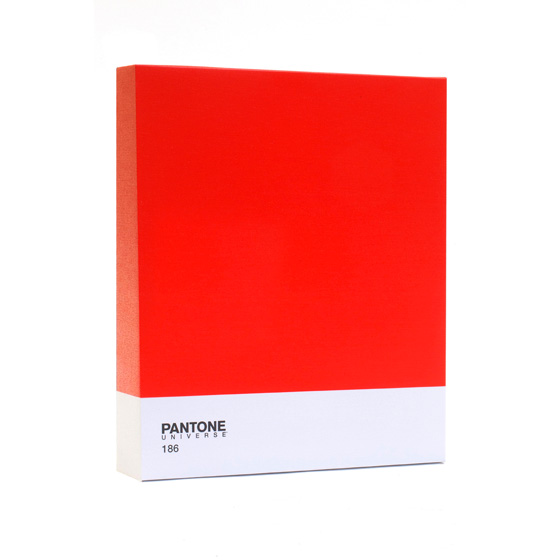 Epic Red Pantone contemporary canvas wall art