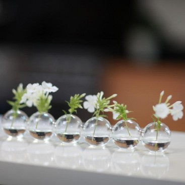 Small Is Beautiful Caterpillar Design Glass Bud Vase Fresh Design