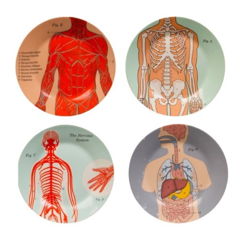 Human anatomy on a plate