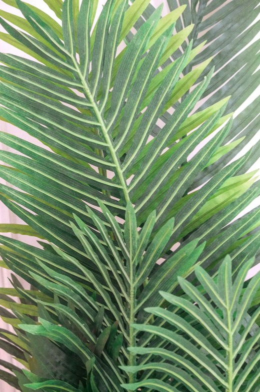 Gorgeous leaves of an artificial paradise palm tree - great for use in interior design and decoration
