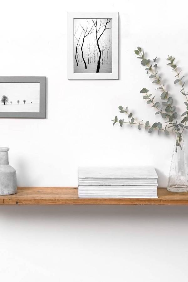 Super shelves! Five wall shelf ideas for your home