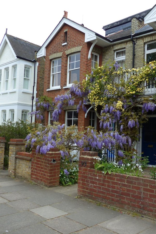 Renovation guide: Period property pitfalls